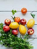 Fresh parsley, lemons, nectarines and mandarins