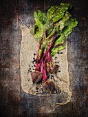 Fresh beetroots on piece of jute