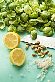 Brussels sprouts, lemons, pistachios and onions (salad ingredients)