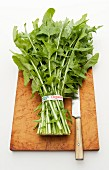 Organic dandelion leaves on a chopping board with a knife