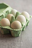 Hühnereier mit grüner Schale in Eierkartonn