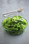 A mixed green salad