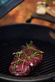 Steak with herbs on a barbecue