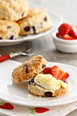 Blueberry and vanilla scones with clotted cream and strawberries