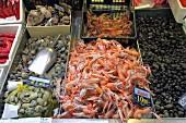 Scampi, Venusmuscheln, Austern und Strandschnecken auf dem Fischmarkt in Bilbao, Baskenland, Spanien