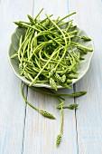 A bowl of wild asparagus