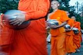 Almosen sammelnde Mönche in der Morgendämmerung auf dem Doi Suthep Berg, Chiang Mai, Thailand