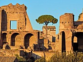 Der Palatin, Rom