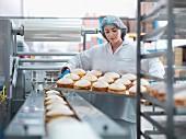 Bäckerin hält Backblech mit Kuchen in der Kuchenfabrik
