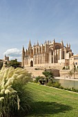 The La Seu Cathedral in Palma de Majorca