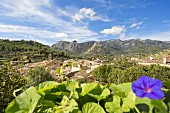 The town of Bunyola at the foot of the Tramuntana Mountains, Majorca