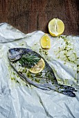 Marinated gilthead with a sprig of rosemary and lemons