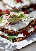 Black bread with cream cheese and radishes