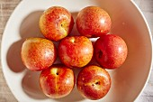 Seven red plums on a plate (seen from above)