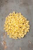 A pile of conchiglie rigate pasta