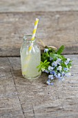 Lemonade with a bunchof forget-me-nots and woodruff