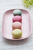 A pistachio macaroon, a strawberry macaroon, a raspberry macaroon and a blueberry macaroon on a pink plate