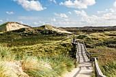 A boardwalk through the dunes on Sylt