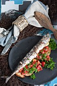 Grilled mackerel on country bread