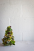 A fir tree made of succulents as a Christmas decoration
