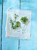 Fresh thyme on a light blue wooden surface