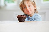 A little boy looking at a chocolate muffin