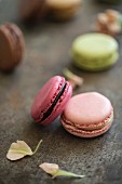 Various coloured macaroons