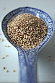 Sesame seeds on an oriental porcelain spoon (close-up)