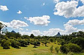 The volcanic Glasshouse Mountains in Queensland, Australia near Brisbane