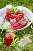 Redcurrant lemonade for a children's party