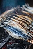 Steckerlfisch (Am Stab gegrillter Fisch, Bayern)