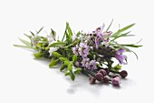 Posy of flowering herbs
