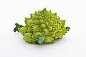 Romanesco broccoli on a white surface
