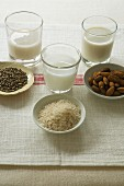 A glass of hemp milk, a glass of rice milk and a glass of almond milk with bowl of hemp, rice and almonds