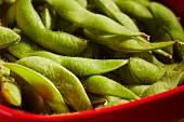 Edamame (unripe soya beans)