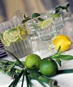 Glasses of mineral water with limes and peppermint