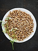 A plate of coriander seeds (seen from above)