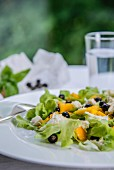 Oak leaf lettuce with mozzarella, mango and blackcurrants