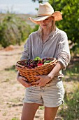 A woman carrying a basket of cherries in an orchard