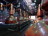 Still room at Suntory Hakushu Distillery, with six wash stills on the left and six spirit stills on the right. Yamanashi Prefecture, Japan.