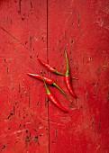 Vier rote Bird Eye Chilischoten auf rotem Untergrund