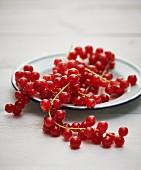 Rote Johannisbeeren auf Teller