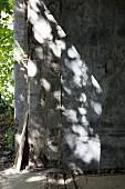 Schattenspiel auf graue Betonwand mit verwitterter Holzabdeckung am Boden