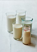 Various types of vegan milk in glasses and bottles