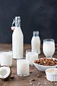 Hausgemachte veganer Milchersatz in Gläsern und Flaschen