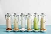 Various types of milk substitutes in bottles with their ingredients: almond milk, rice milk, coconut milk, oat milk, Edamame milk, soya milk