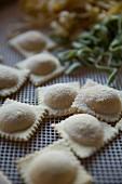 Fresh handmade ravioli on a drying rack