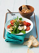 Mange tout salad with tomatoes, mushrooms and cress