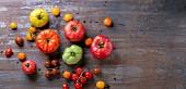Verschiedene Tomatensorten auf Metalluntergrund (Draufsicht)