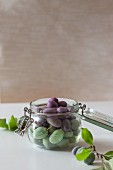 Young green and purple plums in a preserving jar